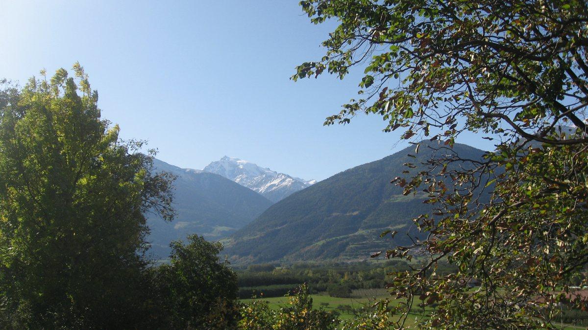 Rennradführer Südtirol / Ortler