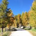 Rennradtour Eisacktal / Herbststimmung