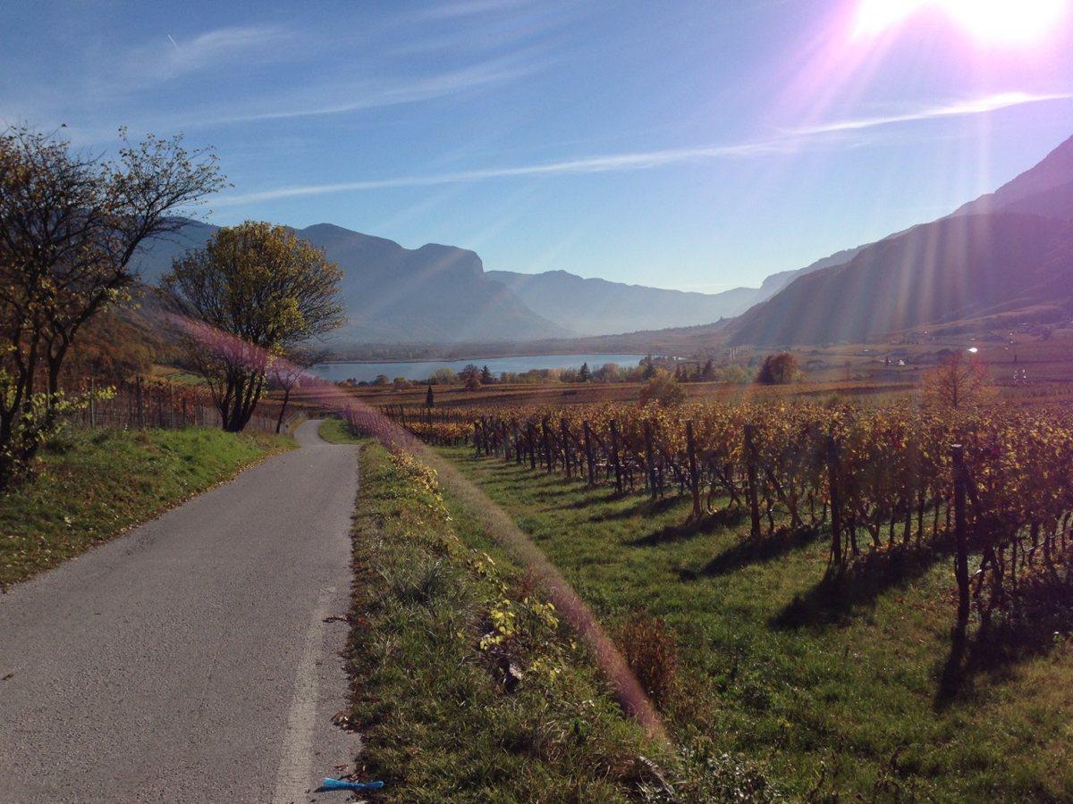 Rennradfahren Südtirol / Goldener Herbst