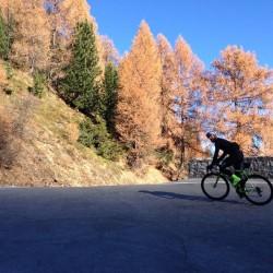 Herbsttour Stilfserjoch / Herbststimmung