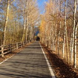 Herbsttour Stilfserjoch / Vinschgau Heimfahrt